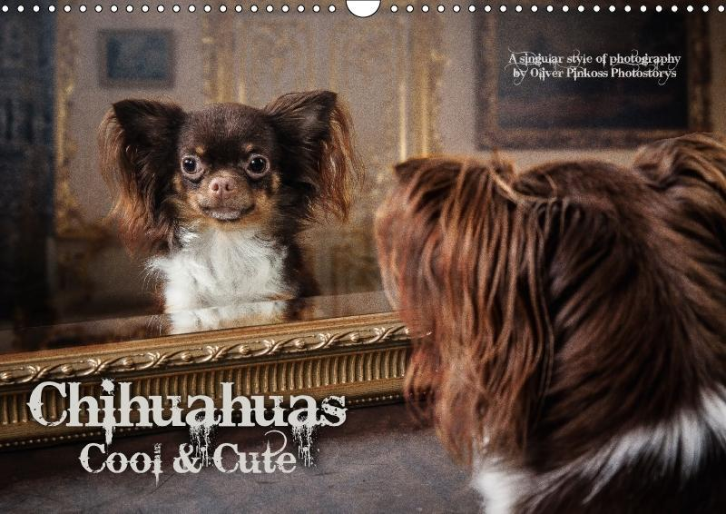 Chihuahuas - Cool & Cute / UK-Version (Wall Cal...