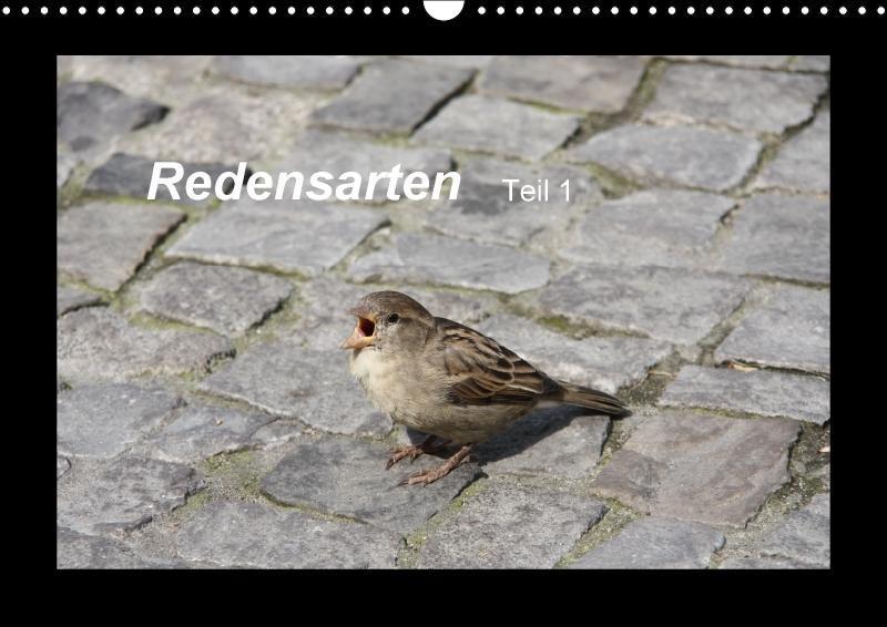 Redensarten Teil 1 (Wandkalender 2018 DIN A3 quer)