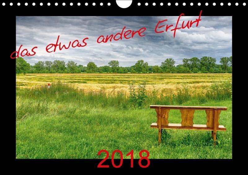 das etwas andere Erfurt (Wandkalender 2018 DIN ...
