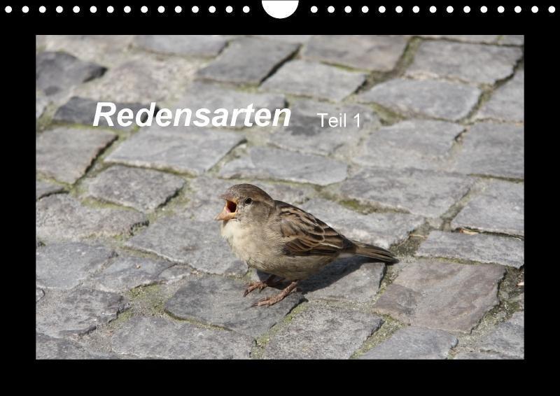 Redensarten Teil 1 (Wandkalender 2018 DIN A4 quer)
