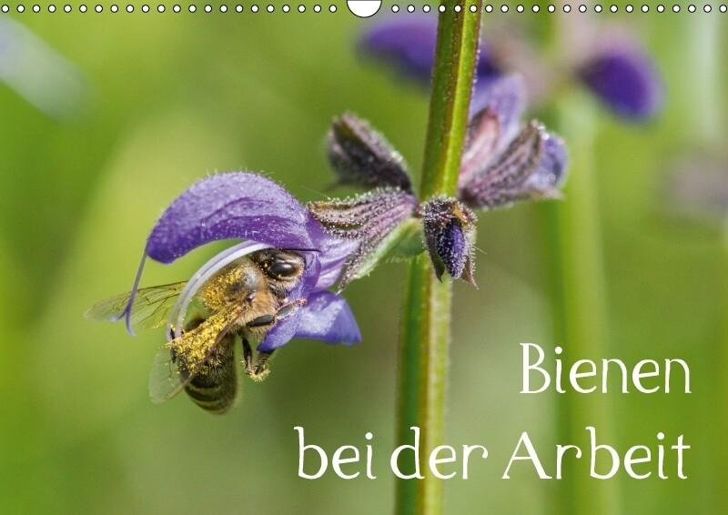 Bienen bei der Arbeit (Wandkalender 2018 DIN A3...