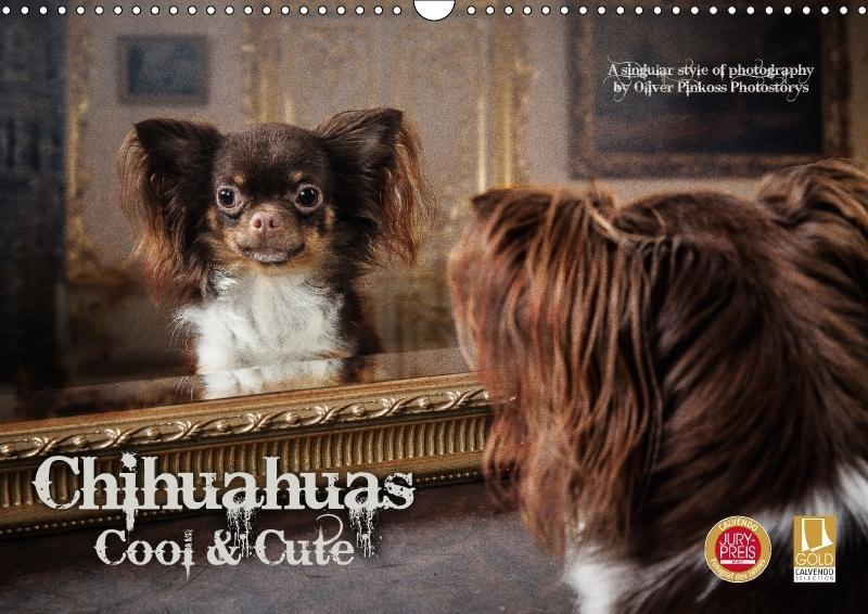 Chihuahuas - Cool and Cute (Wandkalender 2018 D...