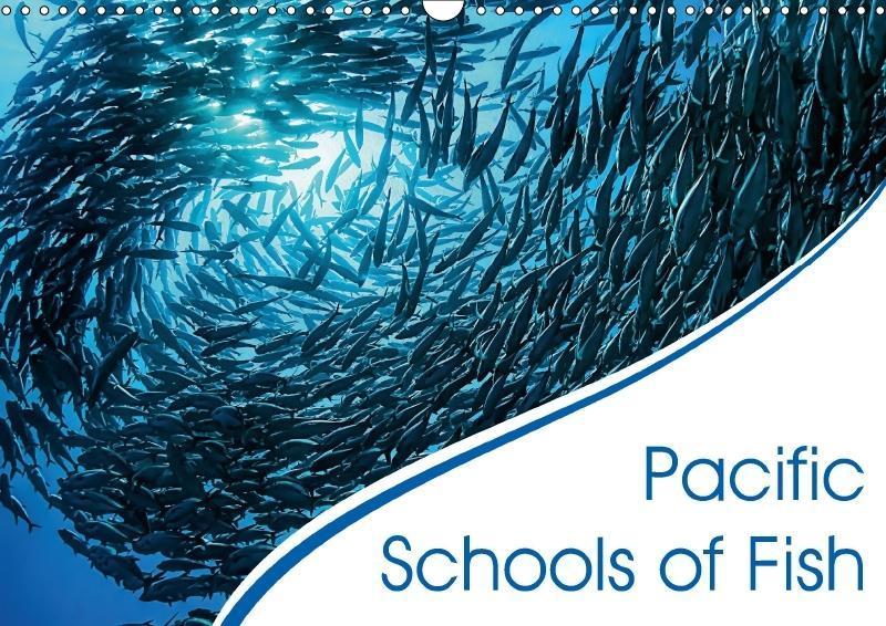 Pacific Schools of Fish (Wall Calendar 2018 DIN...