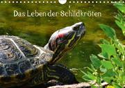 Das Leben der Schildkröten (Wandkalender 2018 DIN A4 quer)