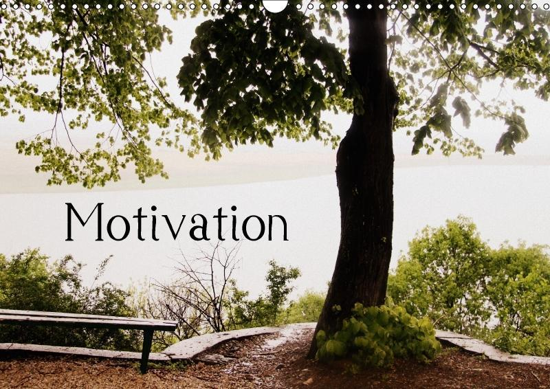 Motivational Quotes Driamond: Dream Ambition Mo...