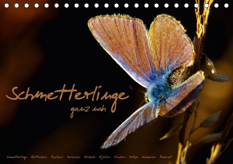Schmetterlinge ganz nah (Tischkalender 2018 DIN...
