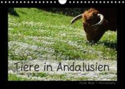 Tiere in Andalusien (Wandkalender 2018 DIN A4 q...