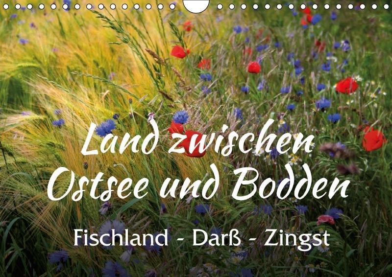 Land zwischen Ostsee und Bodden, Fischland - Da...