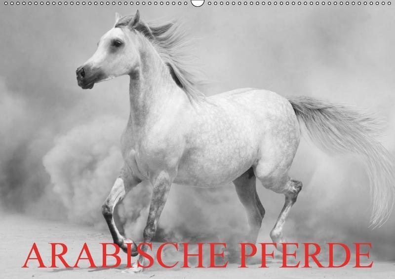 Arabische Pferde (Wandkalender 2018 DIN A2 quer)