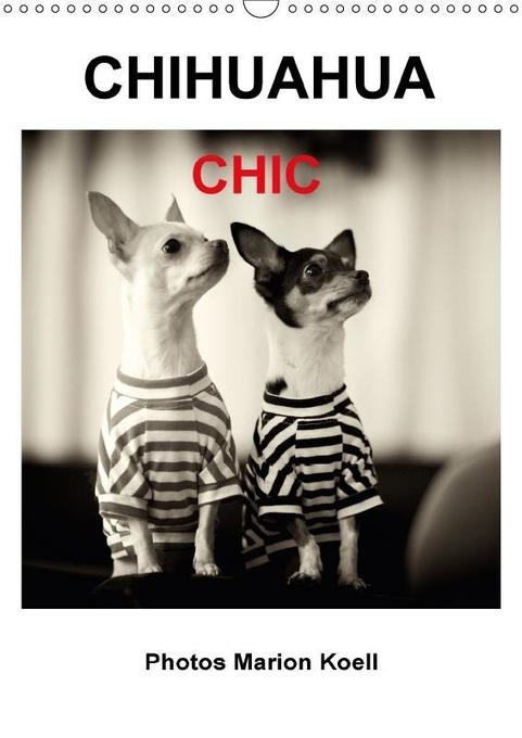 CHIHUAHUA CHIC Photos Marion Koell / UK-Verison...