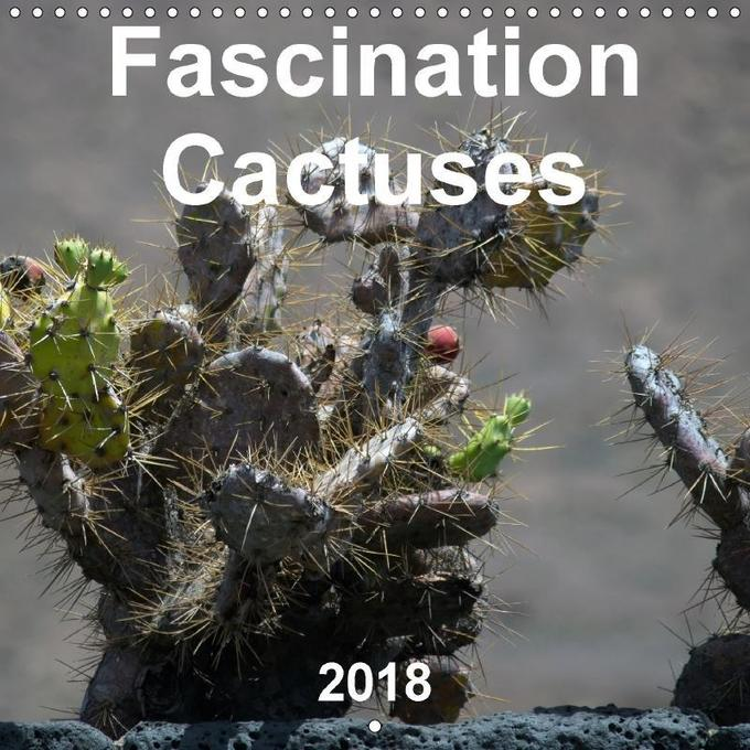 Fascination Cactuses (Wall Calendar 2018 300 × ...