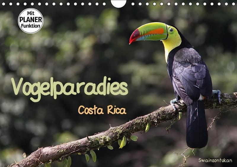 Vogelparadies Costa Rica (Wandkalender 2018 DIN...