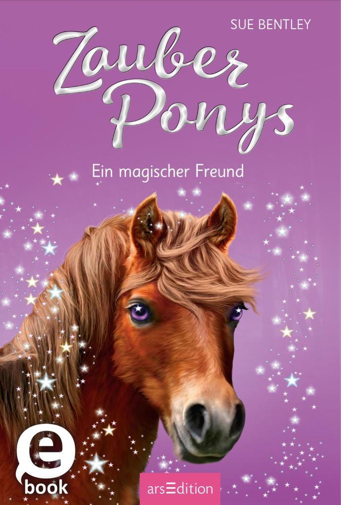 Zauberponys - Ein magischer Freund als eBook Do...