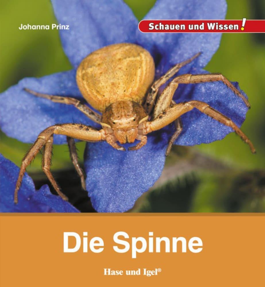 Die Spinne als Buch