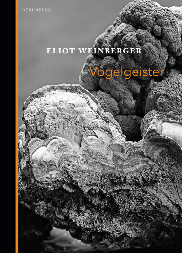 Vogelgeister | Eliot Weinberger | 2017 | deutsch | NEU | The Ghosts of Birds