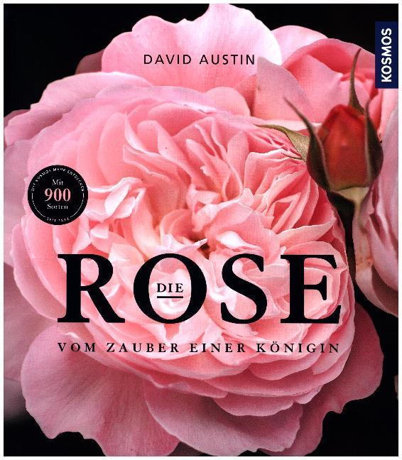 Die Rose als Buch von David Austin