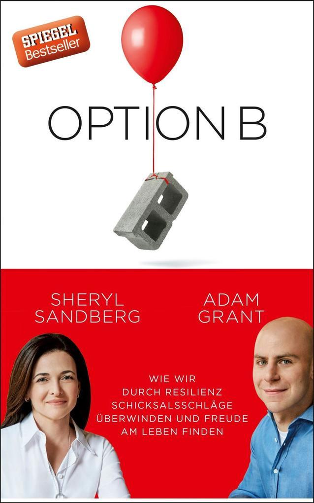 Option B als Buch