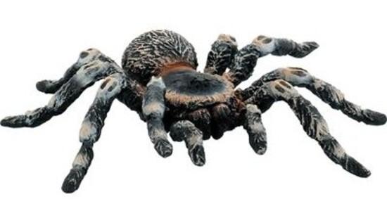 Bullyland 68457 - Animal World - Spinnen und Sk...