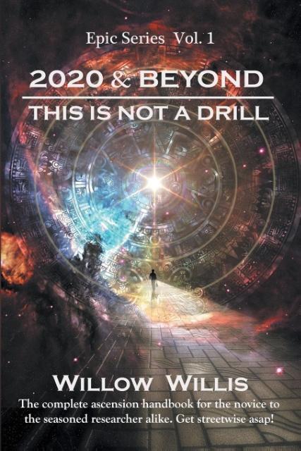 2020 & Beyond als Taschenbuch von Willow Willis