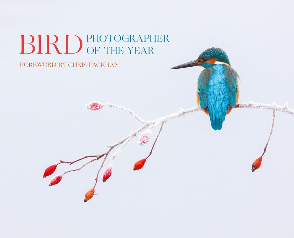 Bird Photographer of the Year: Collection 2 als...