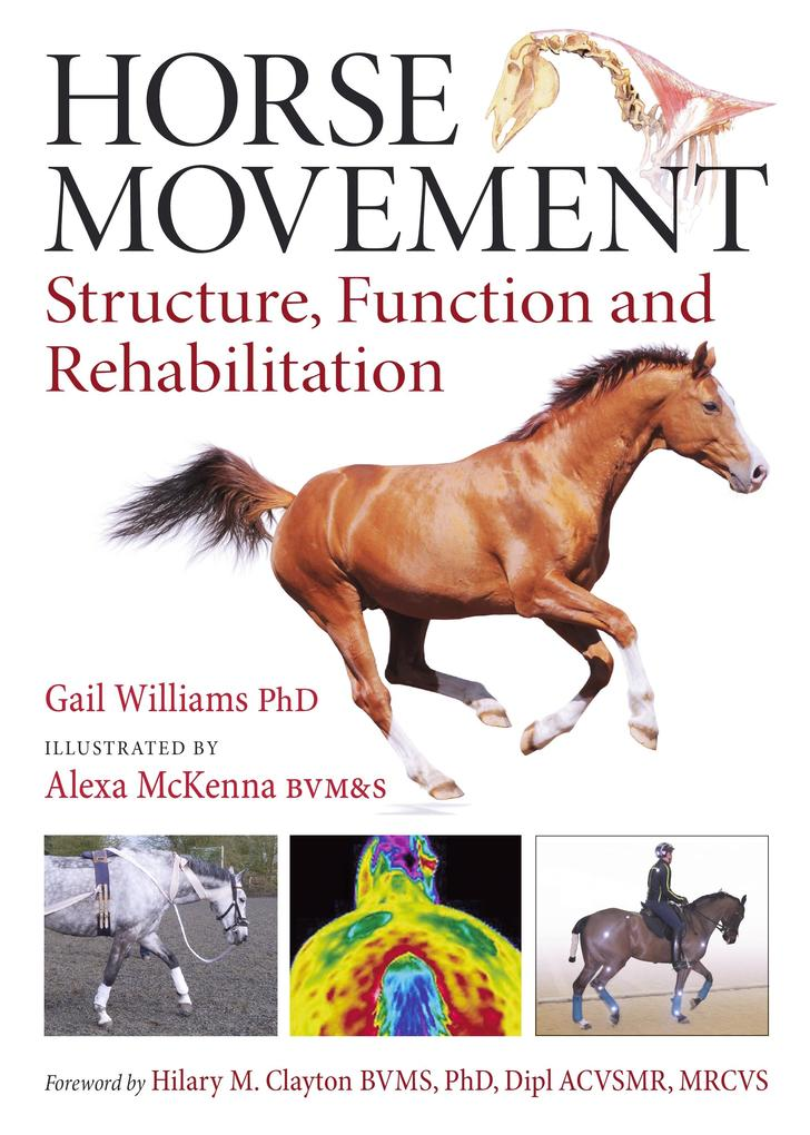 Horse Movement als eBook Download von Gail Will...