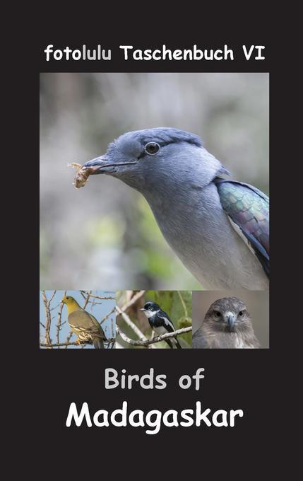 Birds of Madagaskar als Buch von fotolulu
