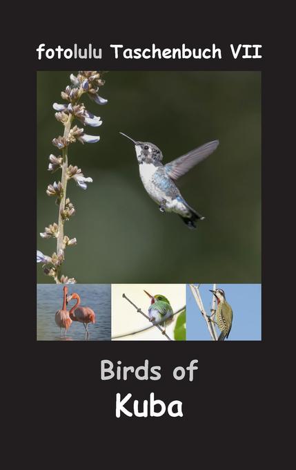 Birds of Kuba als Buch von fotolulu