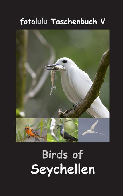 Birds of Seychellen als Buch von fotolulu