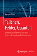 Teilchen, Felder, Quanten