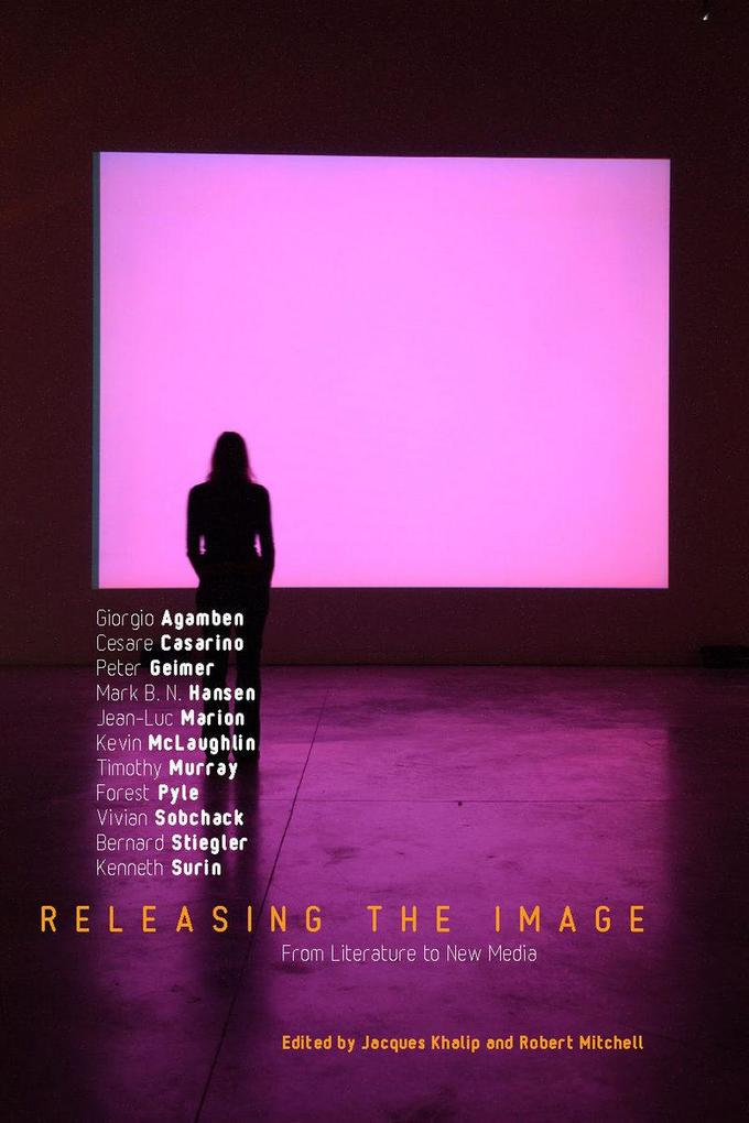 Releasing the Image als eBook Download von
