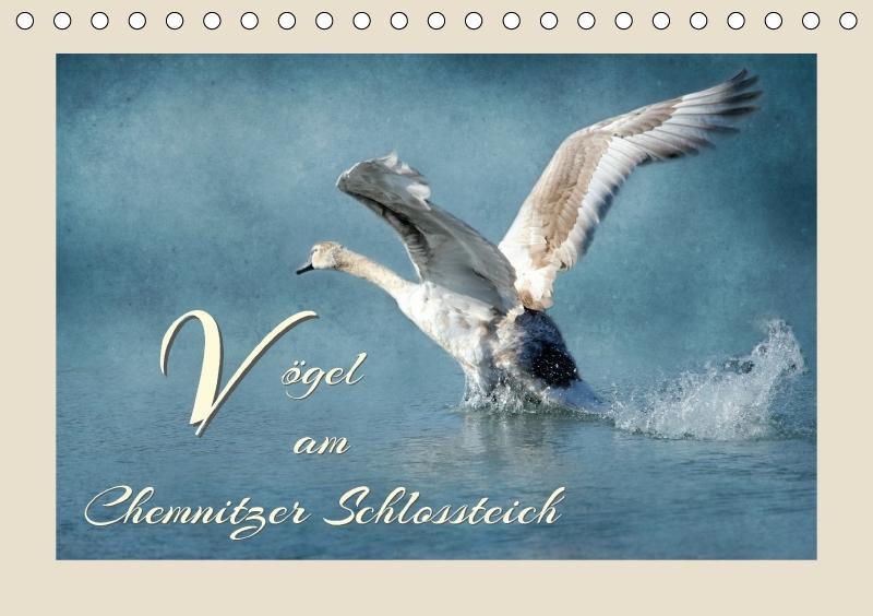 Vögel am Chemnitzer Schlossteich (Tischkalender...