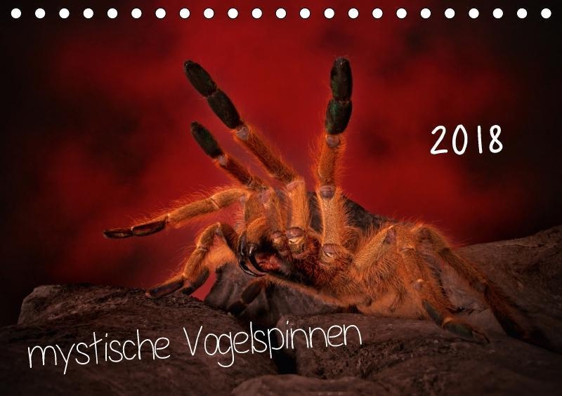 Mystische Vogelspinnen (Tischkalender 2018 DIN ...