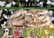 Eulen: In die Augen geschaut (Wandkalender 2018 DIN A2 quer) Dieser erfolgreiche Kalender wurde dieses Jahr mit gleichen Bildern und aktualisiertem Kalendarium wiederveröffentlicht.