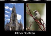 Ulmer Spatzen (Wandkalender 2018 DIN A3 quer) Dieser erfolgreiche Kalender wurde dieses Jahr mit gleichen Bildern und aktualisiertem Kalendarium wiederveröffentlicht.