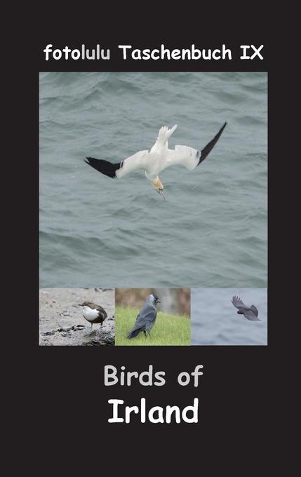 Birds of Irland als Buch von Fotolulu