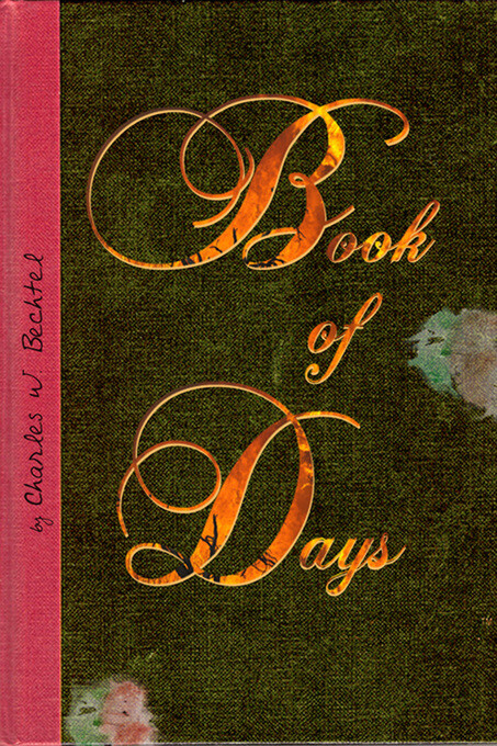 Book of Days als eBook Download von Charles Bec...
