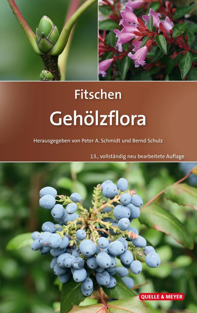 Fitschen - Gehölzflora als Buch