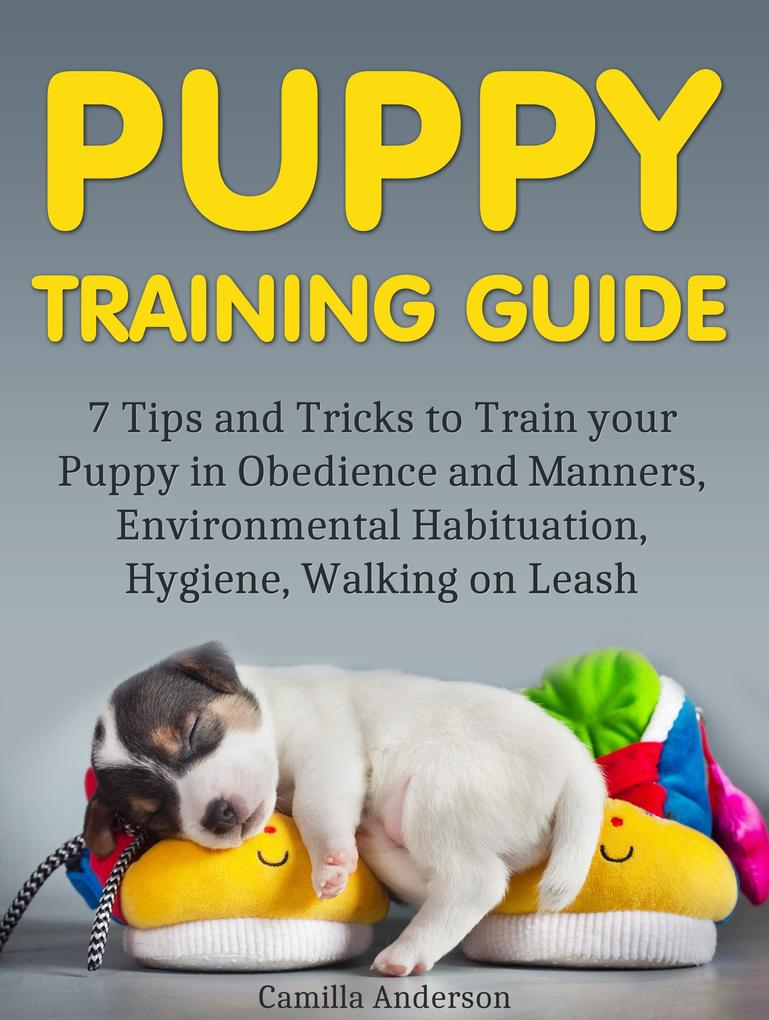 Puppy Training Guide: 7 Tips and Tricks to Trai...