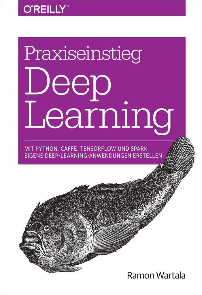 Praxiseinstieg Deep Learning als Buch