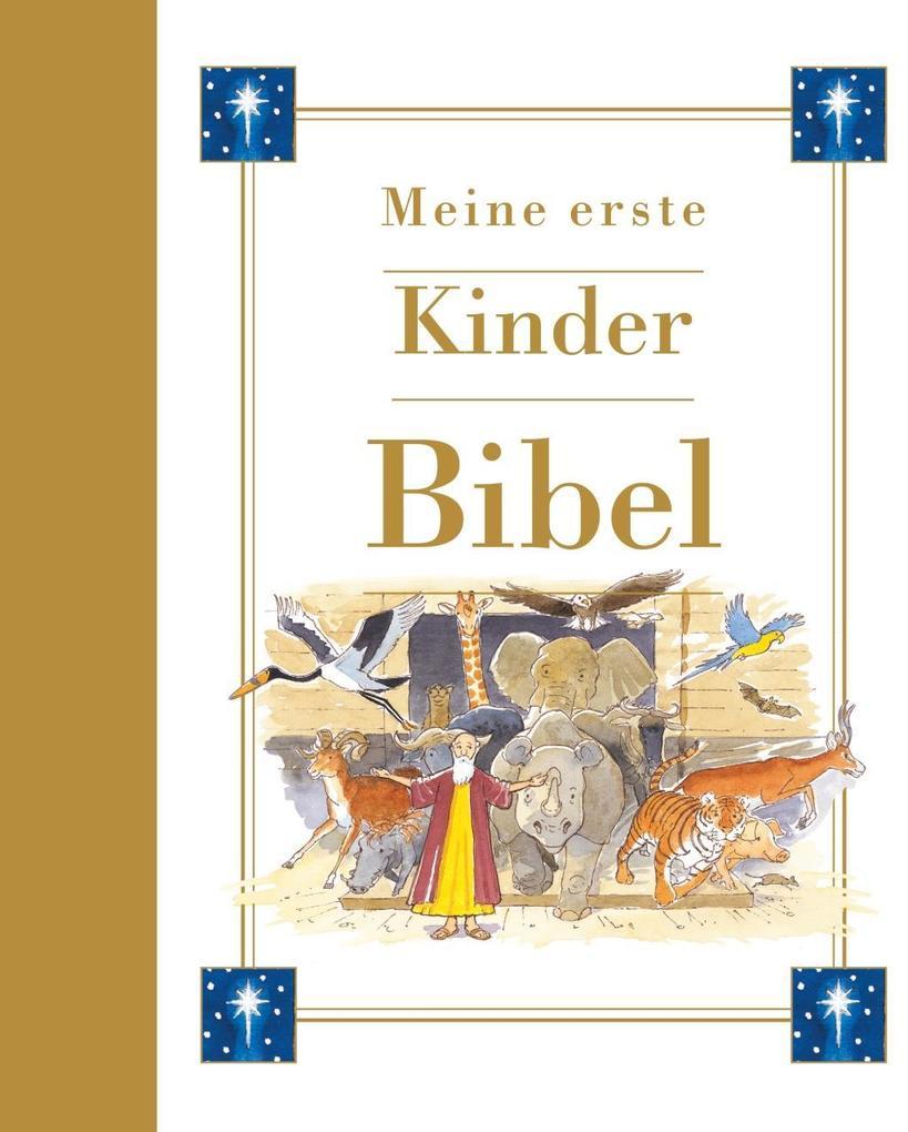 Meine erste Kinderbibel als Buch