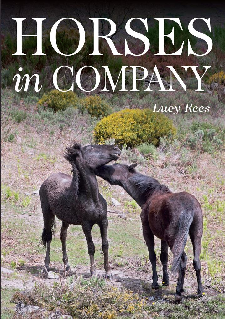 Horses in Company als eBook Download von Lucy Rees