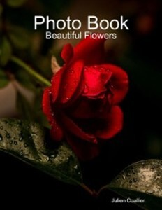 Photo Book: Beautiful Flowers als eBook Downloa...
