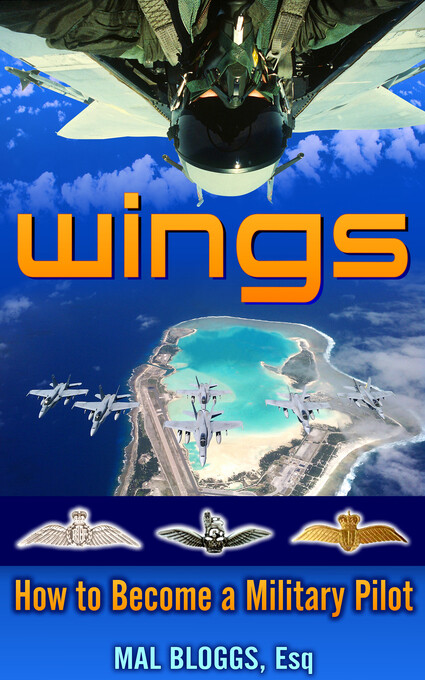 Wings als eBook Download von Mal Bloggs