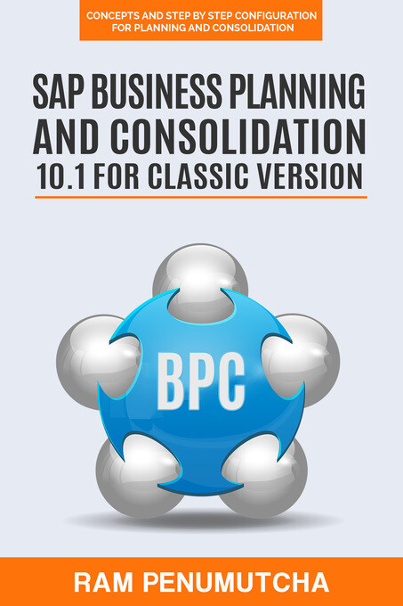 SAP Business Planning and Consolidation 10.1 fo...