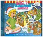 Bibi Blocksberg erzählt ... 5: Weihnachtsgeschichten