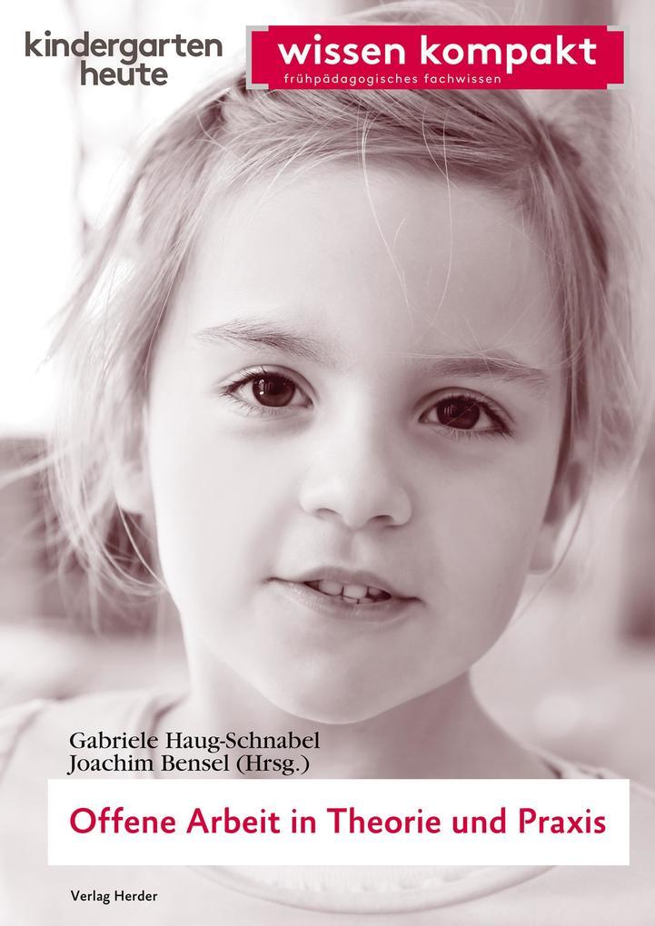 Offene Arbeit in Theorie und Praxis als eBook D...