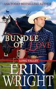 Bundle of Love - A Western Romance Novel (Long Valley Romance, #7)