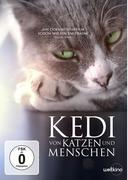 Kedi - Von Katzen und Menschen, 1 DVD