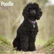 Poodle Calendar 2018