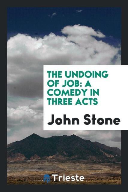 The Undoing of Job als Taschenbuch von John Stone